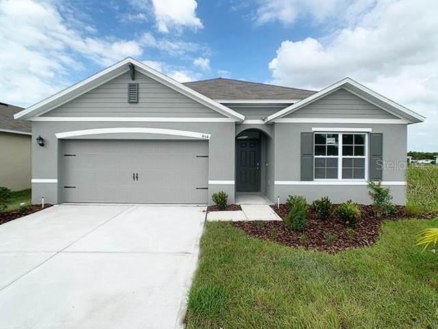 3136 Logan Berry Drive, Mount Dora, FL 32757 (MLS #O5918169) :: Realty Executives Mid Florida
