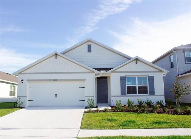 3148 Logan Berry Drive, Mount Dora, FL 32757 (MLS #O5918176) :: Delta Realty, Int'l.