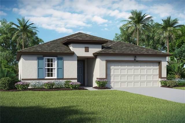 6879 Shelby Lynn Way #12, Zephyrhills, FL 33542 (MLS #O5918220) :: Frankenstein Home Team