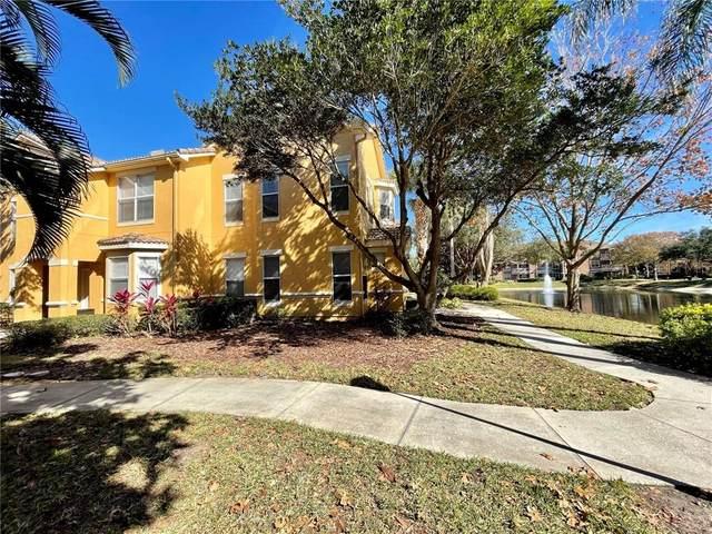 19914 Villa Creek Drive #205, Orlando, FL 32821 (MLS #O5918227) :: Visionary Properties Inc