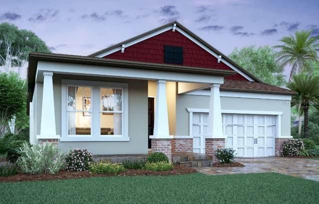 908 Hull Island Drive, Oakland, FL 34787 (MLS #O5918261) :: Vacasa Real Estate