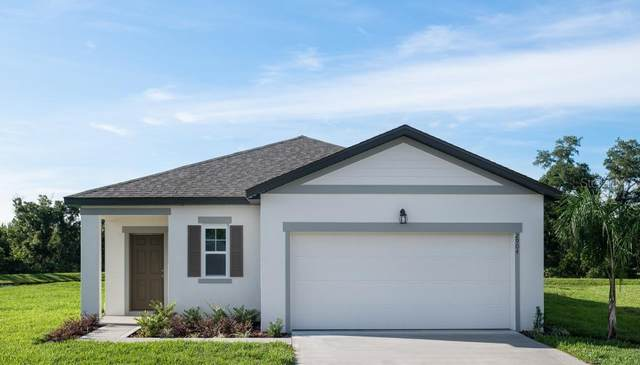 3010 Nova Scotia Way, New Smyrna Beach, FL 32168 (MLS #O5918313) :: Florida Real Estate Sellers at Keller Williams Realty