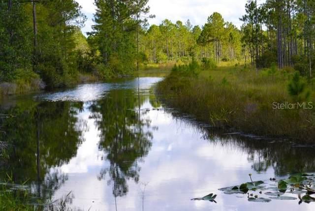 300 Omega Ranch Road, New Smyrna Beach, FL 32168 (MLS #O5918495) :: Premier Home Experts
