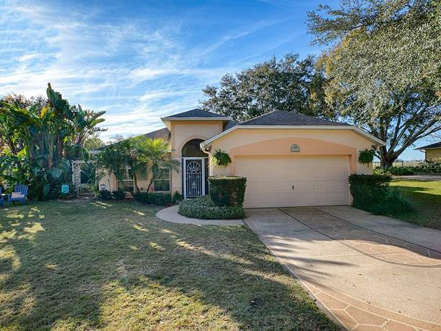 37119 Sandy Lane, Grand Island, FL 32735 (MLS #O5918517) :: Gate Arty & the Group - Keller Williams Realty Smart