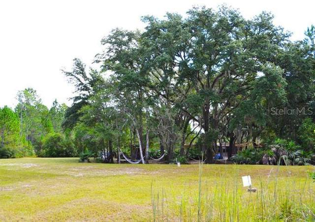 400 Omega Ranch Road, New Smyrna Beach, FL 32168 (MLS #O5918578) :: Sarasota Property Group at NextHome Excellence