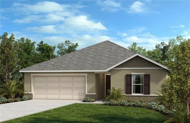 3178 Eagle Hammock Circle, Kissimmee, FL 34743 (MLS #O5918853) :: Visionary Properties Inc