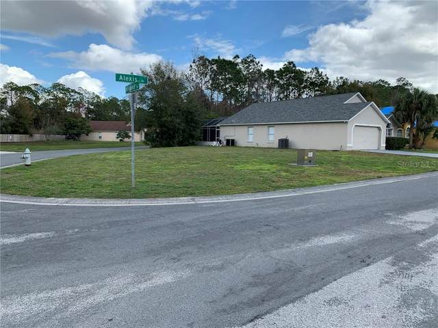4741 Alexis Drive, Kissimmee, FL 34746 (MLS #O5919073) :: Bob Paulson with Vylla Home