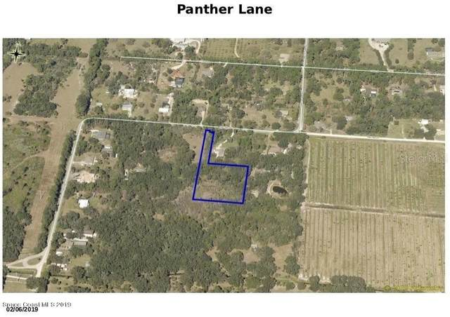 0000 Panther Lane, Mims, FL 32754 (MLS #O5919898) :: Rabell Realty Group