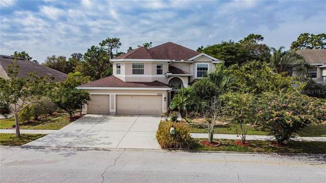 11716 Stonewood Gate Drive, Riverview, FL 33579 (MLS #O5920195) :: Prestige Home Realty