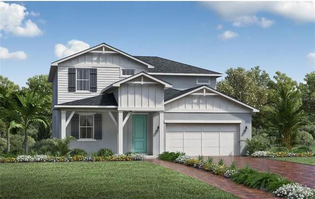 2454 Park Ridge Street, Apopka, FL 32712 (MLS #O5920819) :: Realty One Group Skyline / The Rose Team