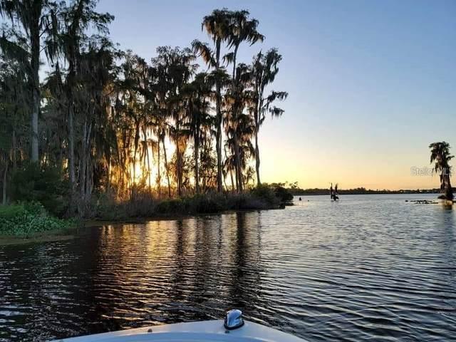 14192 Bridgewater Crossings Boulevard, Windermere, FL 34786 (MLS #O5920849) :: Bob Paulson with Vylla Home