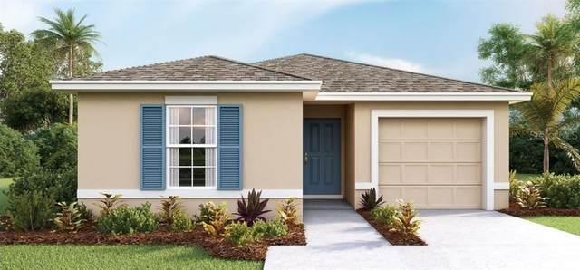 479 Jacks Way, Davenport, FL 33837 (MLS #O5921179) :: Pepine Realty