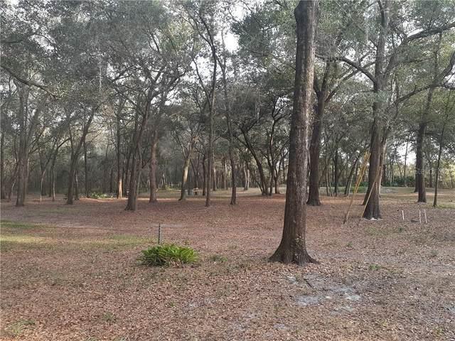 Shetland Trail, Orlando, FL 32808 (MLS #O5921553) :: RE/MAX Premier Properties