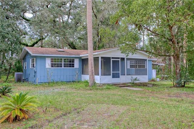 18101 County Road 450A, Umatilla, FL 32784 (MLS #O5921849) :: Young Real Estate