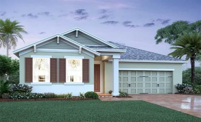 2101 Bay Line Road, Oakland, FL 34787 (MLS #O5921935) :: Vacasa Real Estate
