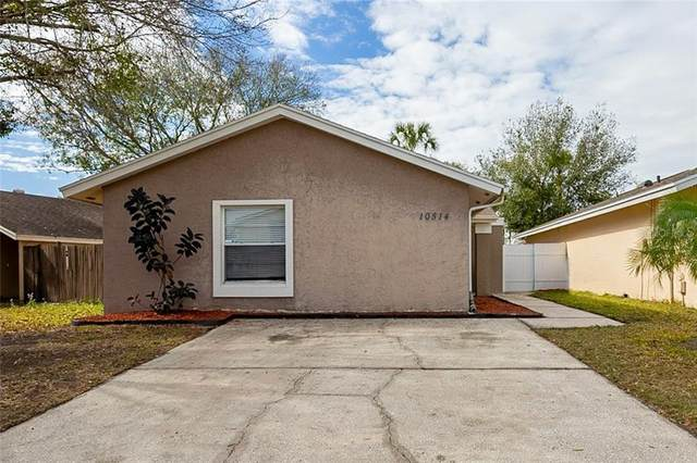 10514 Parkcrest Drive, Tampa, FL 33624 (MLS #O5922481) :: Vacasa Real Estate