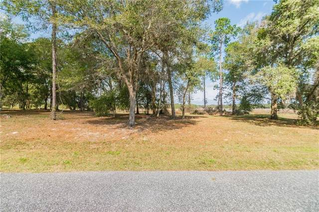 14 Bonsmara Drive, Groveland, FL 34736 (MLS #O5922601) :: Rabell Realty Group
