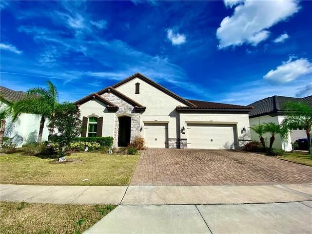 10413 Warrick Street, Orlando, FL 32836 (MLS #O5922992) :: CGY Realty
