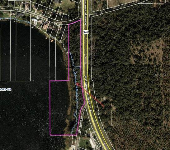6950 Lake Ola Drive, Mount Dora, FL 32757 (MLS #O5923105) :: Memory Hopkins Real Estate