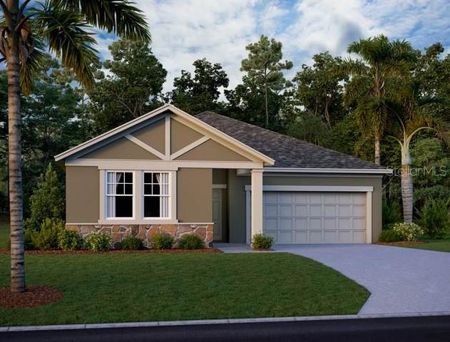 771 Livestock Loop, Saint Cloud, FL 34771 (MLS #O5923261) :: Visionary Properties Inc