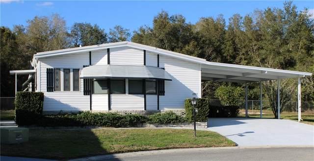 2805 Hortree Court #1868, Zellwood, FL 32798 (MLS #O5923275) :: The Lersch Group