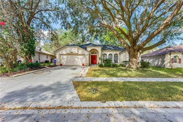 2704 Child Street, Ocoee, FL 34761 (MLS #O5923852) :: RE/MAX Premier Properties