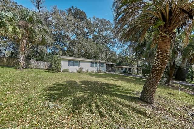 3631 Lake View Drive, Apopka, FL 32703 (MLS #O5924140) :: Everlane Realty