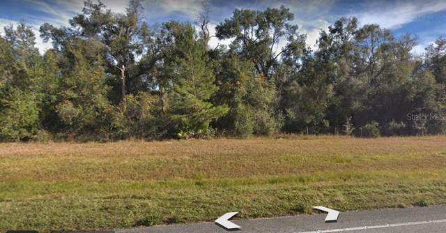 S Us Hwy 17, Pierson, FL 32180 (MLS #O5924412) :: The Heidi Schrock Team