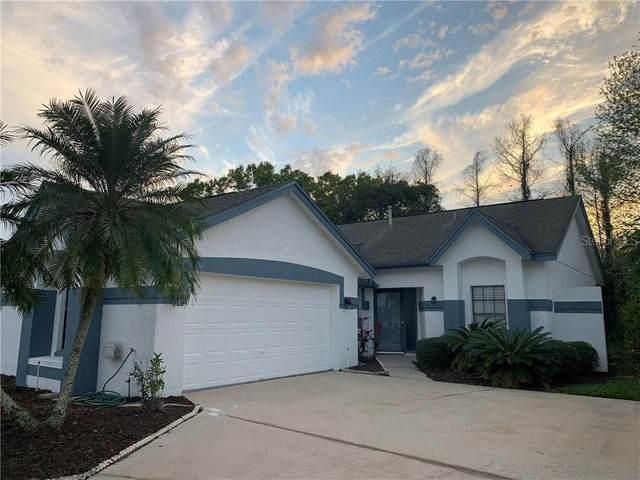 5867 Parkview Point Drive, Orlando, FL 32821 (MLS #O5924879) :: Everlane Realty