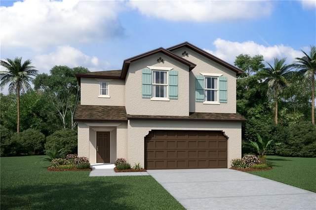 2810 Crest Drive, Kissimmee, FL 34744 (MLS #O5924901) :: Pepine Realty