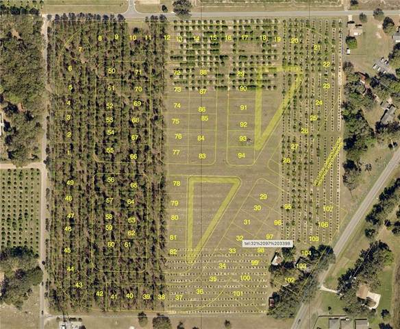 State Road 19, Umatilla, FL 32784 (MLS #O5924960) :: Griffin Group