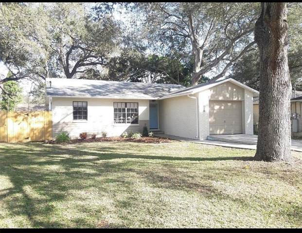 6818 S Dauphin Avenue, Tampa, FL 33611 (MLS #O5925314) :: The Duncan Duo Team