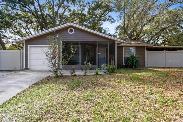 737 Lakeview Drive, Ocoee, FL 34761 (MLS #O5925463) :: RE/MAX Premier Properties