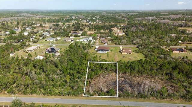 Overton Street, Orlando, FL 32833 (MLS #O5925481) :: Dalton Wade Real Estate Group