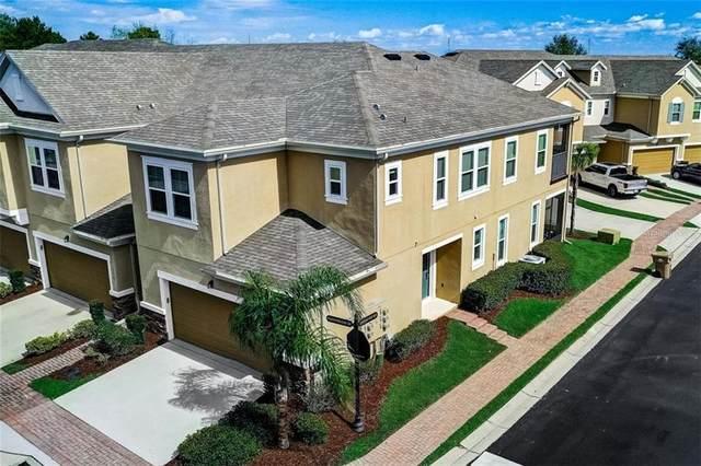 13571 Fountainbleau Drive, Clermont, FL 34711 (MLS #O5925601) :: RE/MAX Premier Properties