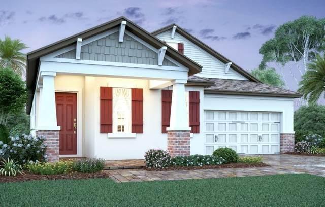 900 Hull Island Drive, Oakland, FL 34787 (MLS #O5925617) :: Vacasa Real Estate