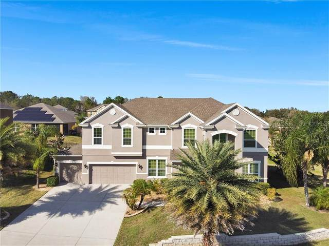 942 Daisy Hill Court, Apopka, FL 32712 (MLS #O5925827) :: Griffin Group