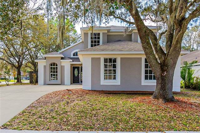 28546 Meadowrush Way, Wesley Chapel, FL 33543 (MLS #O5925988) :: Vacasa Real Estate