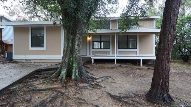 598 Martin Place Boulevard, Apopka, FL 32712 (MLS #O5926045) :: RE/MAX Premier Properties