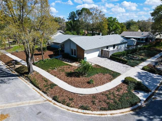 3533 Seaford Lane, Casselberry, FL 32707 (MLS #O5926119) :: Everlane Realty