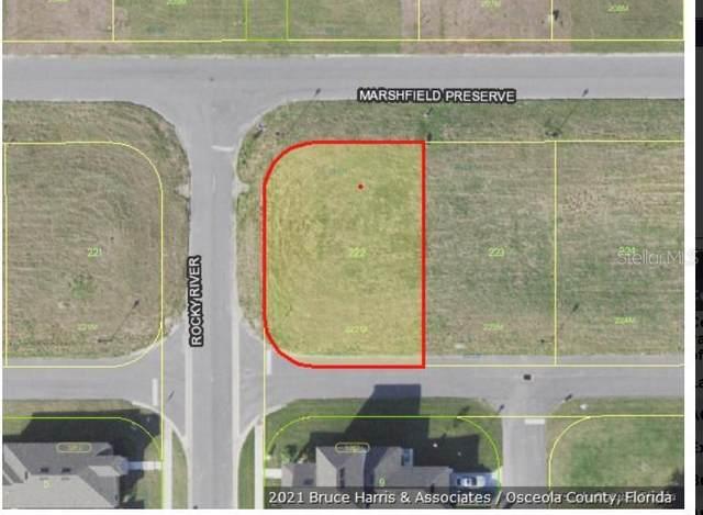 2300 Marshfield Preserve Way, Kissimmee, FL 34746 (MLS #O5926339) :: Pristine Properties