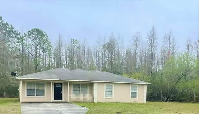 26432 Bluestripe Drive, Wesley Chapel, FL 33544 (MLS #O5926498) :: Griffin Group