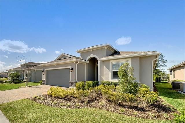 1121 Avery Meadows Way, Deland, FL 32724 (MLS #O5926544) :: Prestige Home Realty