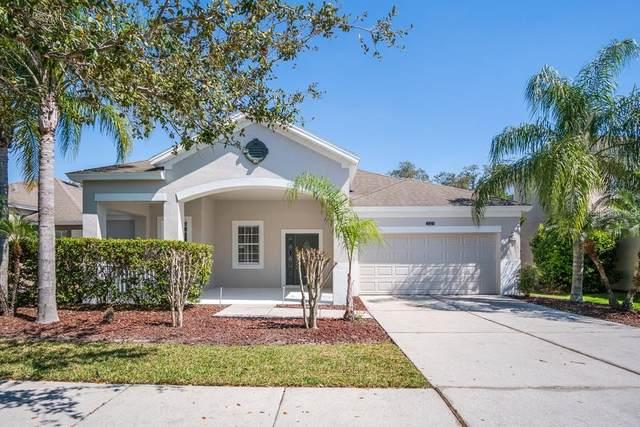 2321 Black Lake Boulevard, Winter Garden, FL 34787 (MLS #O5926563) :: Bustamante Real Estate