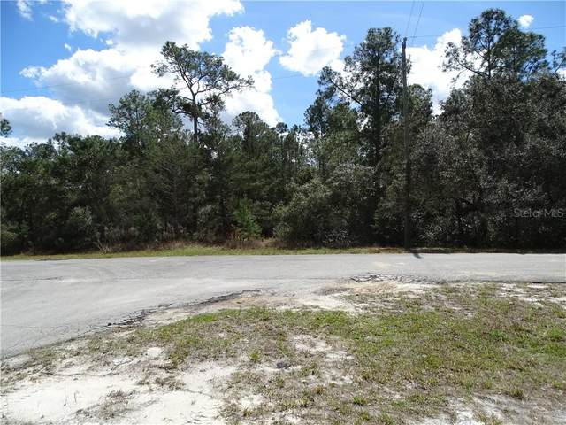 LOT 2 Larkspur Ave, Eustis Fl, 32736, Eustis, FL 32736 (MLS #O5926655) :: The Duncan Duo Team