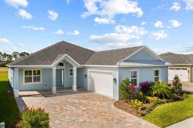 2816 Sienna View Terrace, New Smyrna Beach, FL 32168 (MLS #O5927153) :: The Duncan Duo Team