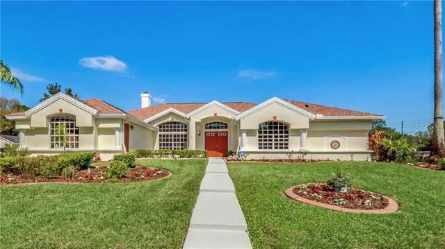 1029 Southern Oak Lane, Apopka, FL 32712 (MLS #O5927154) :: Pepine Realty