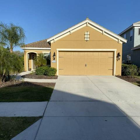 12648 Sagewood Drive, Venice, FL 34293 (MLS #O5927272) :: The Hesse Team