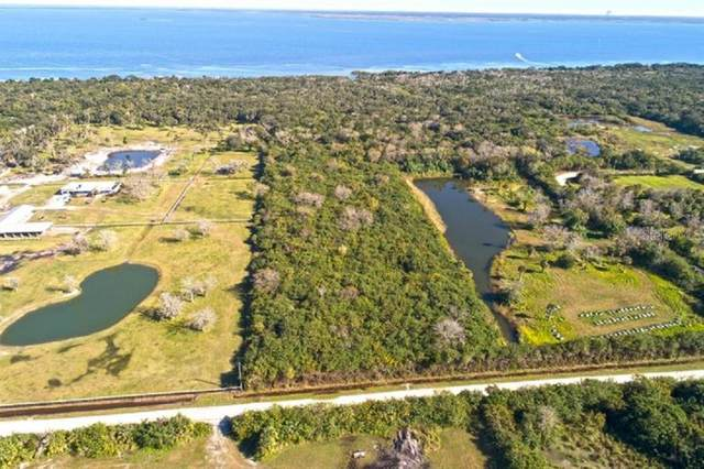 Hammock Road, Mims, FL 32754 (MLS #O5927821) :: The Light Team