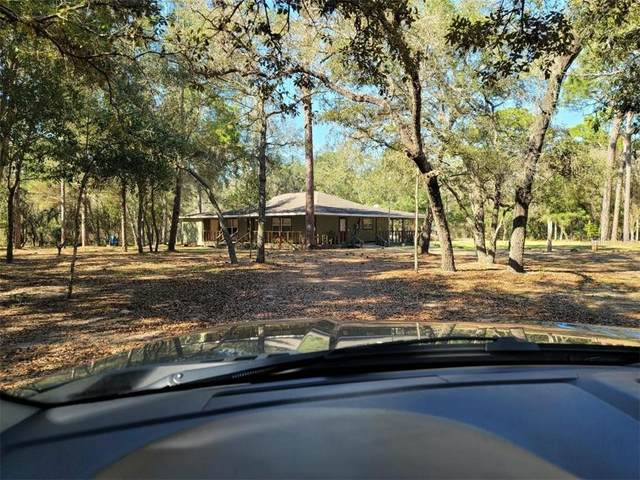 14707 Delbell Road, Hudson, FL 34669 (MLS #O5927952) :: Realty One Group Skyline / The Rose Team